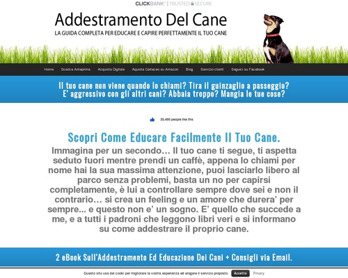 Addestramento Del Cane - Corso Addestramento Cani