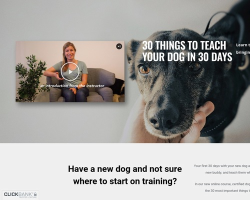 30 Things to Teach Your Dog Online Course – 30 Things to Teach Your Dog