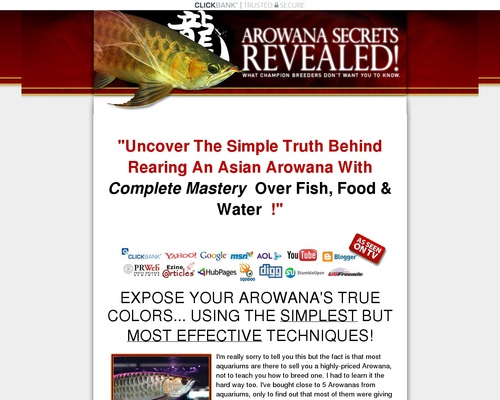 Arowana Fish *SECRETS* Revealed | Learn Insider Arowana Care Tips