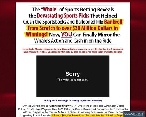 The Whale Picks