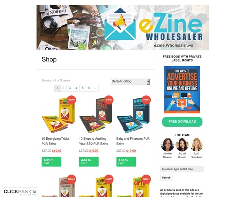 Ezine Wholesaler — eZines, eCourses, and eMail Content with Private