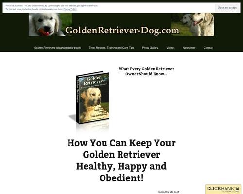 Golden Retrievers : Everything You Need to Know | Golden Retriever Dog